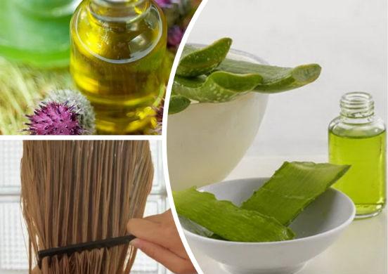 Сок алоэ - чудесный эликсир, позволяющий остановить выпадение волос и ускорить их рост