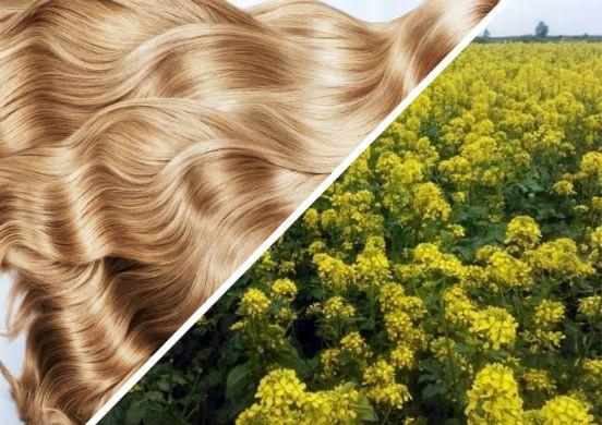 Какие маски с горчицей можно сделать дома, чтобы прекратить выпадение волос и усилить их рост?