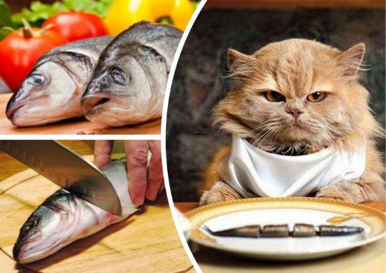 Рыбно-овощная диета - полезная и сбалансированная система питания, позволяющая сбросить лишние килограммы