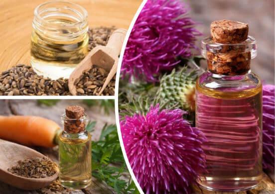 Чем полезно масло расторопши для женщин и мужчин и как правильно его стоит употреблять