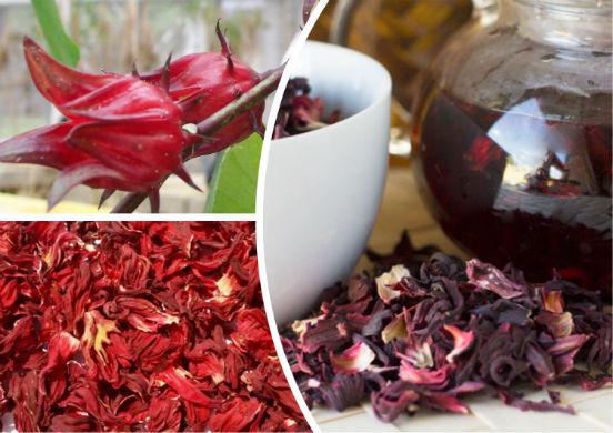 Какими свойствами обладает чай с гибискусом и как правильно его заваривать?