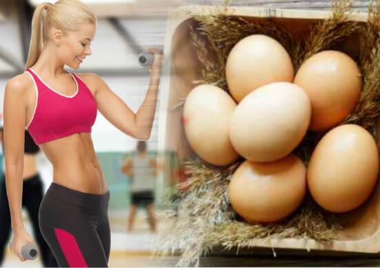 Продукты питания после тренировки или что кушать, чтобы похудеть и улучшить свою фигуру