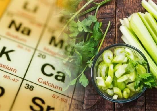 Чем сельдерей полезен для организма и в каких случаях он может нанести вред?